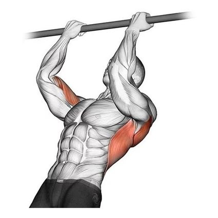 barra-fixa-de-parede-crossfit-pull-up-treino-musculaco-D_NQ_NP_677572-MLB41374140786_042020-F